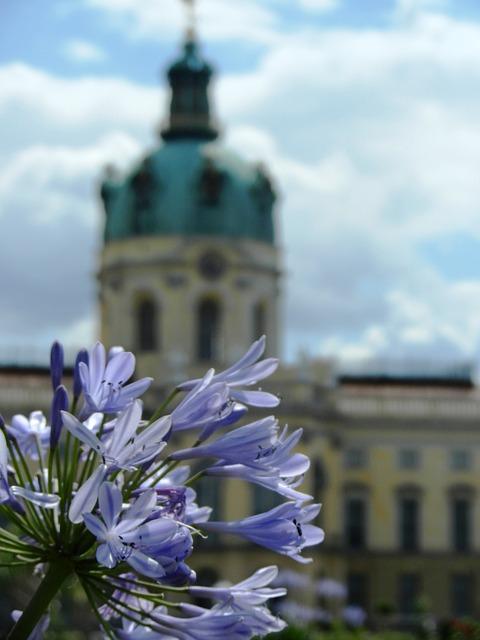 Charlottenburg Weinkiste kaufen